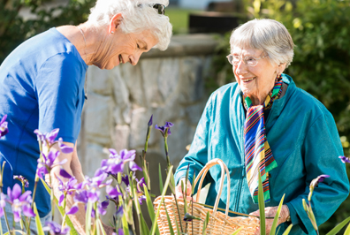Two senior women picking flowers at StoneRidge Senior Living Community in Mystic, CT