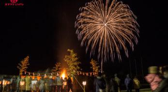 宮城県、最大規模の冬花火!平成最後の「石越どんと祭冬の花火大会」をレポート。