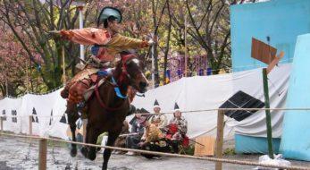 浅草流鏑馬の魅力とは?東京の真ん中で歴史感じる伝統行事を楽しんでみませんか?