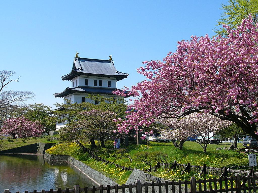 令和のスタートをお花見で!桜と北海道グルメが楽しめる「松前さくらまつり」をご紹介!