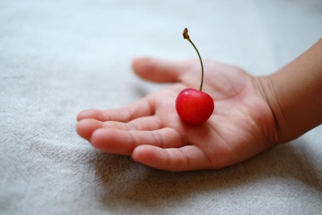 「桜桃忌」ならではの珍しい光景!文豪 太宰治の好物が埋め込まれているのは?