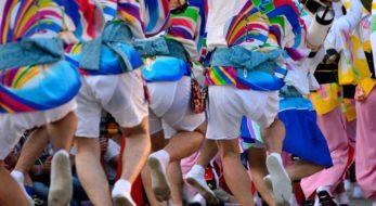 徳島阿波おどり 踊る阿呆の一年を追え!踊りに賭ける一年をレポート