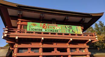 1万本の菊がお出迎え!日本最古の歴史を持つ「笠間の菊まつり」に今年も行ってきた!