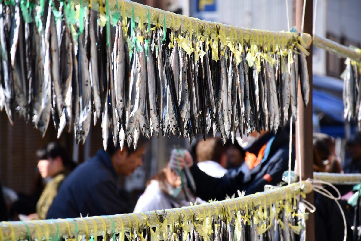 さんま丸干し1,000本ふるまいや、さんま寿しなどが楽しめる「第8回 熊野きのもとさんま祭り」を1/26に開催