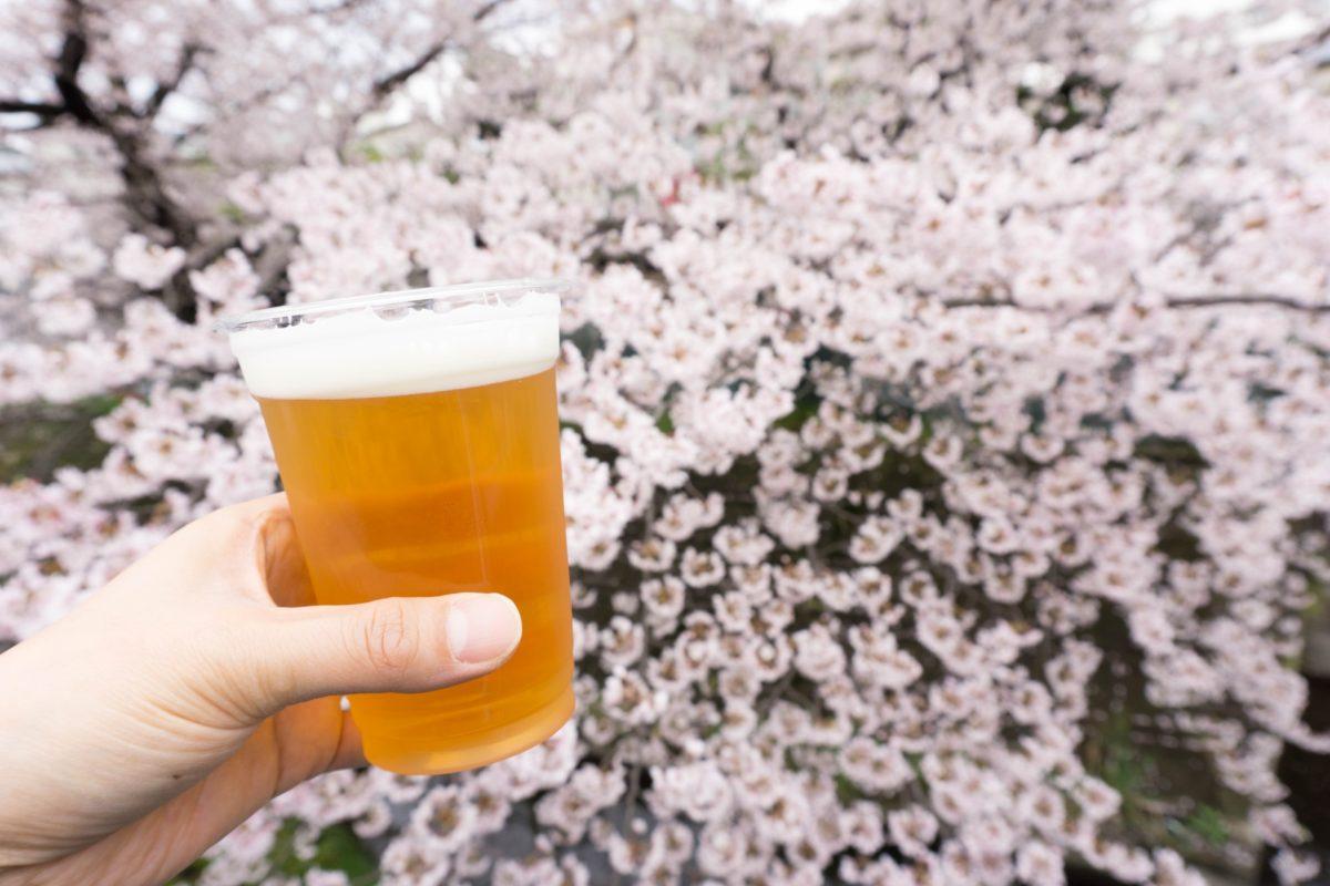 お花見で飲みたいビール特集!桜柄のオシャレなラベルも必見