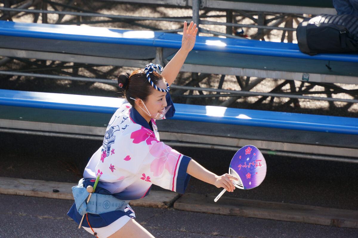 徳島県阿波踊り協会による女法被の流し踊り