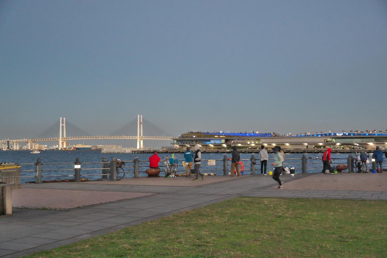 ベイブリッジと大さん橋