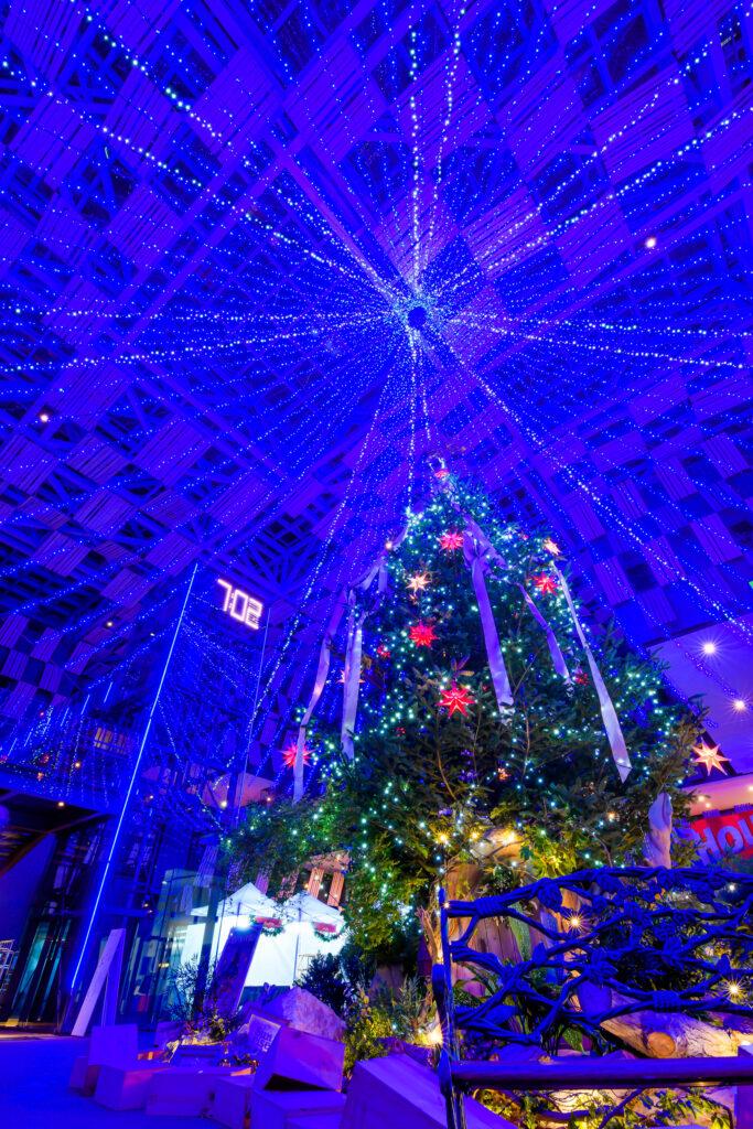 長岡駅近く、市役所と賑わいスペースが合体したアオーレ長岡。特大のクリスマスツリー。