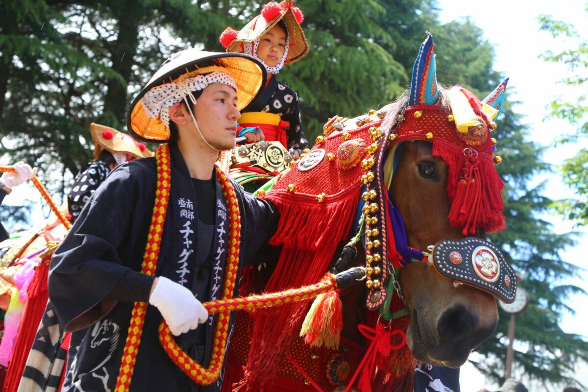 「チャグチャグ馬コ」水田を進む彩り豊かな馬|観光経済新聞