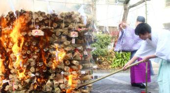 鳥越神社とんど焼2021!歳神様をお送りし、災厄を祓う正月の祭り【速報】