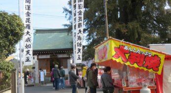 【鈴谷のだるま市】金比羅天堂の神木、与野の大カヤの根元に並ぶ縁起物