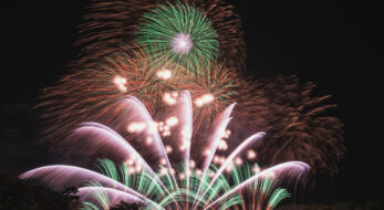 #花火駅伝 コロナ終息を願い井川町で日本国花苑さくらまつりが開催!最後は花火も!