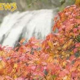 3万年前の噴火伝える荘厳で明媚 日本の滝百選の秋
