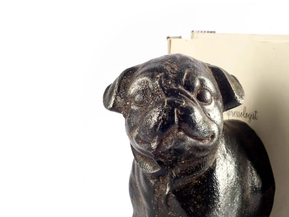 Rent Pug Bookend
