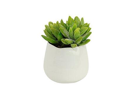 Eden's Vase