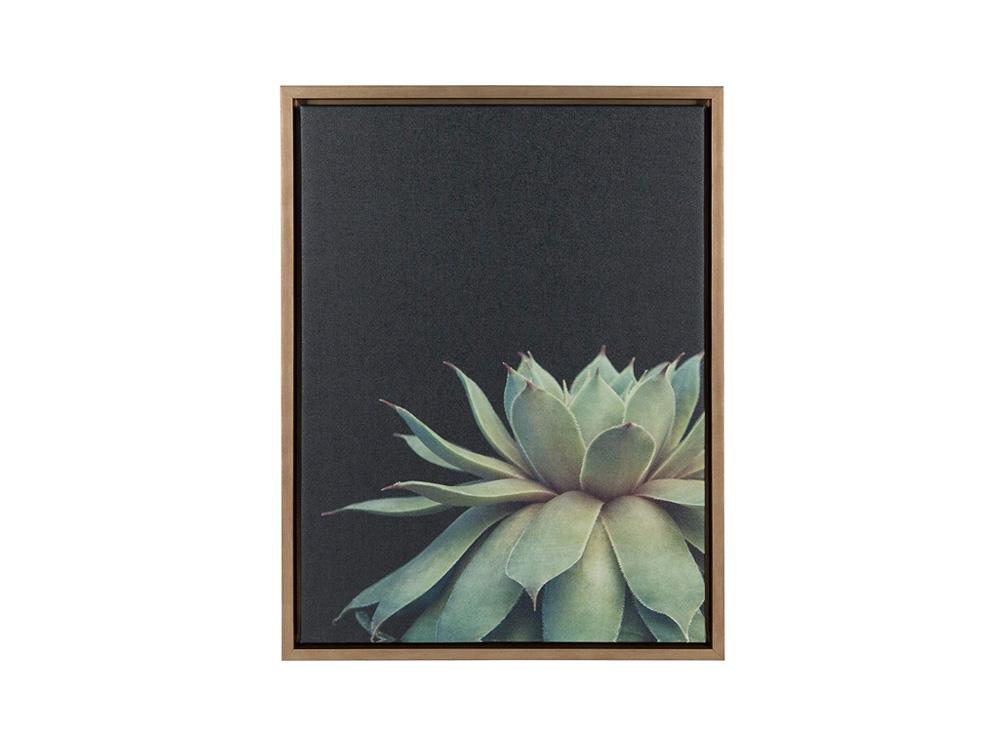 Anae Succulent Wall Art