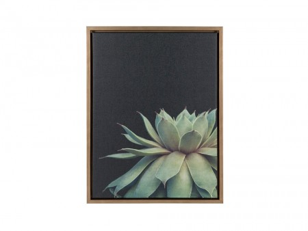 Anae Succulent Wall Art