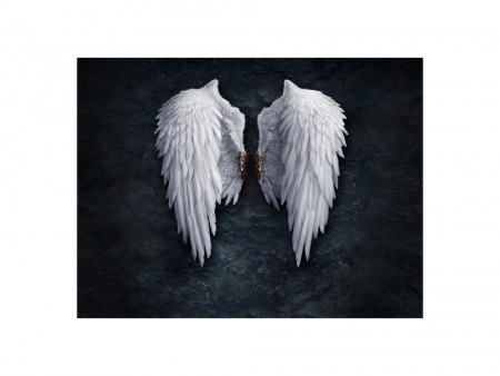 Angel wings art