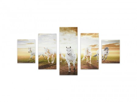 5 piece stallion art