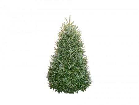 chicago-christmas-trees