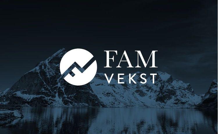 Nettside, logo og visuell profil
