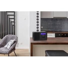 Asztali internet rádió, Bluetooth, AUX, WLAN, DLNA-ra alkalmas, fekete, Renkforce RF-IR-MONO1 10. kép