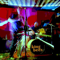 The King Bees Blues Band