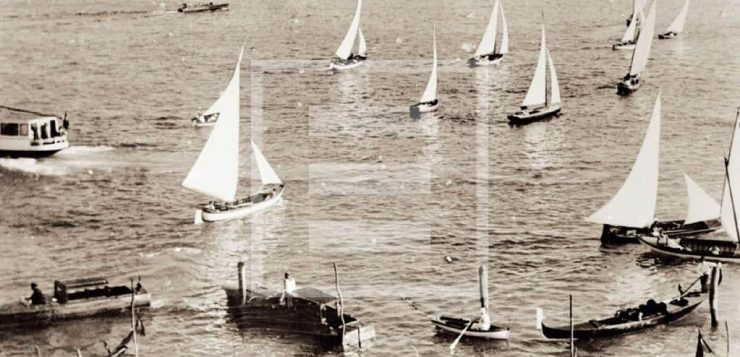 compagnia della vela