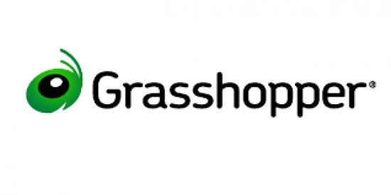 Grasshopper Entrepreneur Scholarship