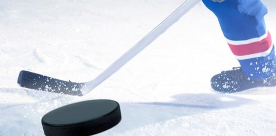 Vinyl Fence Wholesaler Hockey Essay Scholarship
