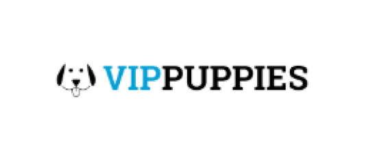 VIP Puppies Scholarship