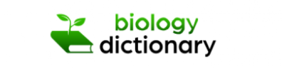 Biology Dictionary Scholarship