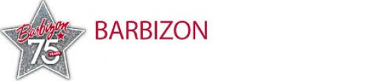 Barbizon College Tuition Scholarship Program