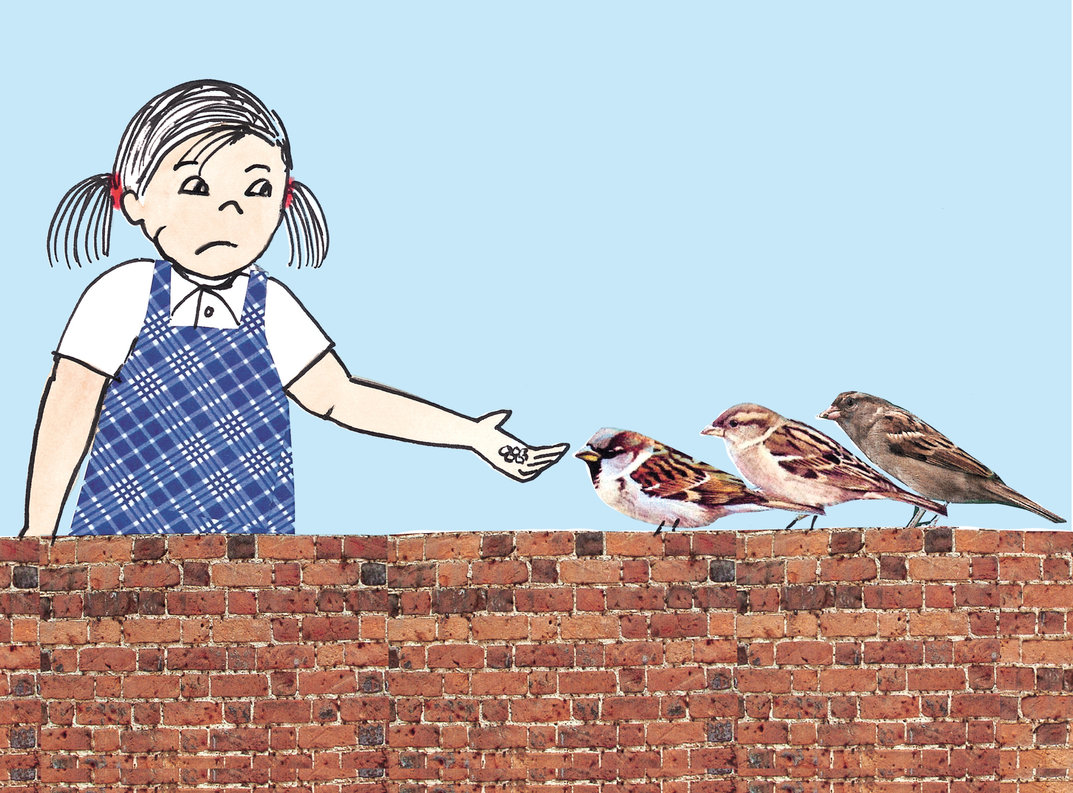 Girl feeding sparrows on a wall thecheapjerseys Gallery