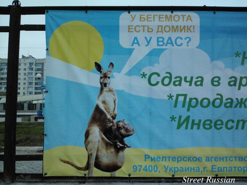 hippo_has_a_home