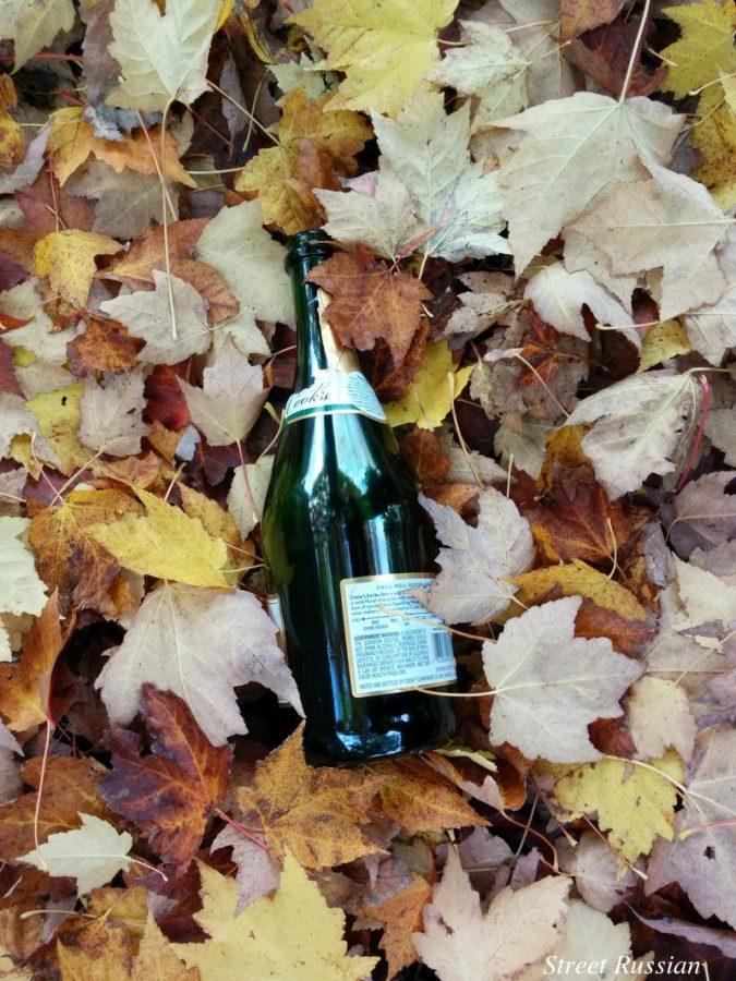 bottle_in_leaves