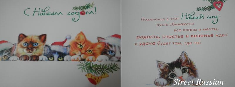 cat_NY_card_Russian