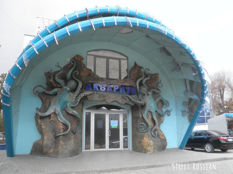 ukrainian_aquarium