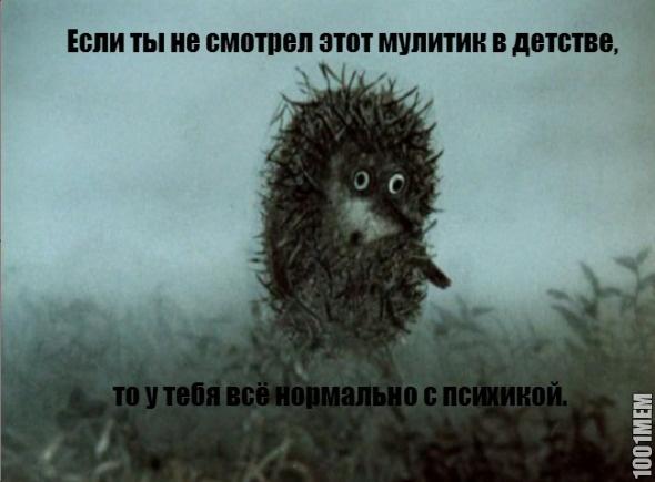 hedgehog_fog_meme