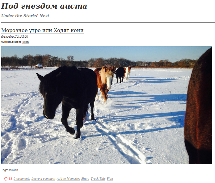 6 cool blogs in Russian