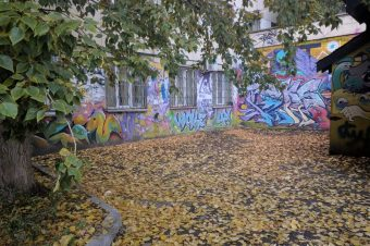 Chelyabinsk in autumn