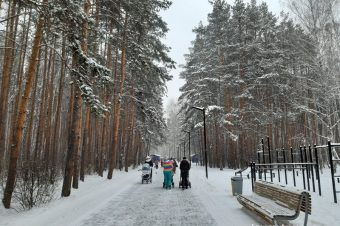 Snow day(s)