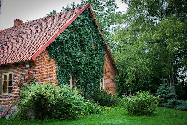 Strefasaun.pl - Ciche wody - Budry