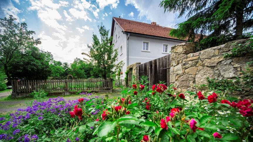 Strefasaun.pl - Dzikie Róże - Lubomierz