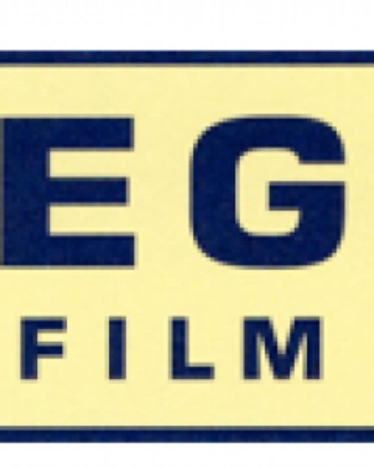 VEGA Film AG Gudinchet