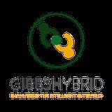Praca, praktyki i staże w Gibbs Hybrid Poland