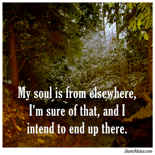 Sumadvice My Soul Is From Elsewhere Im Sure Of That And I