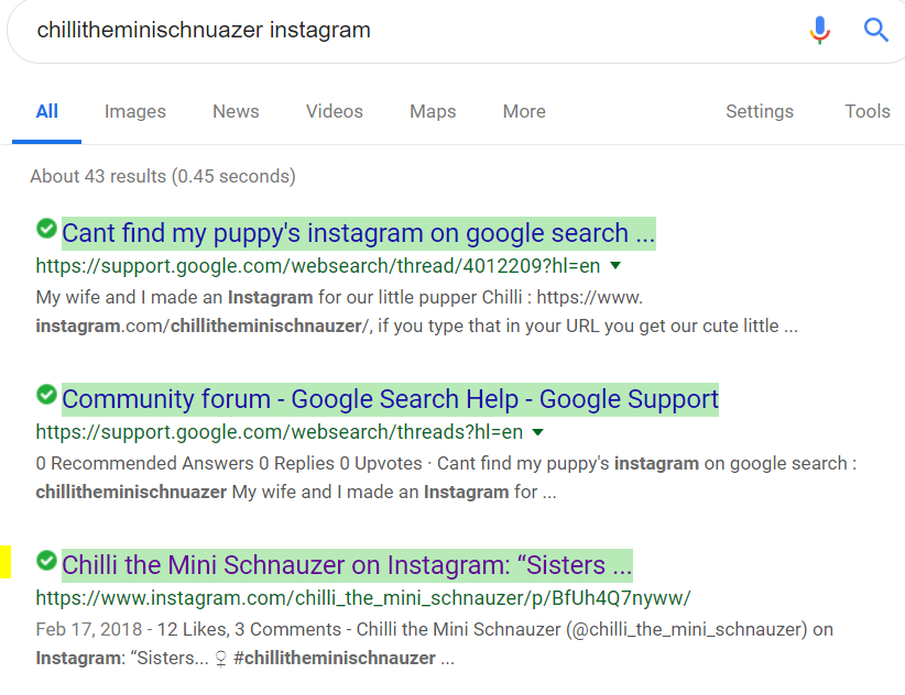 Cant find my puppy's instagram on google search