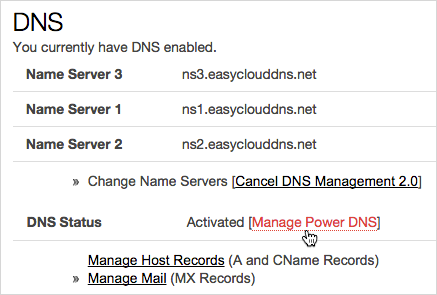 [Manage Power DNS] (管理 Power DNS) 選項