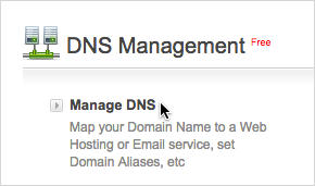 [Manage DNS] リンク